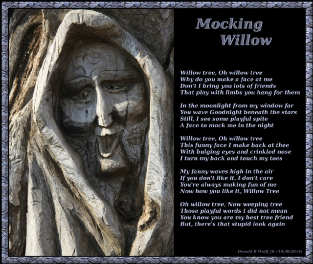 Mocking Willow Poem By Donald R Wolff Jr Poem Hunter