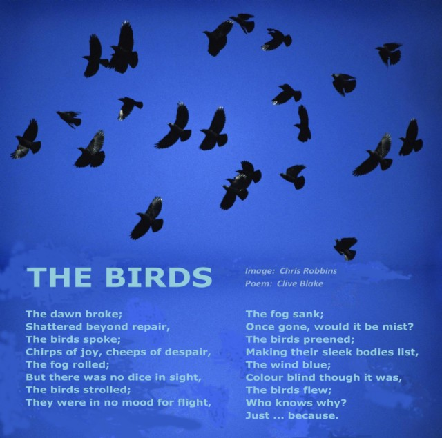 The Birds Poem by Clive Blake - Poem Hunter