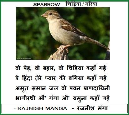 sparrow in hindi language