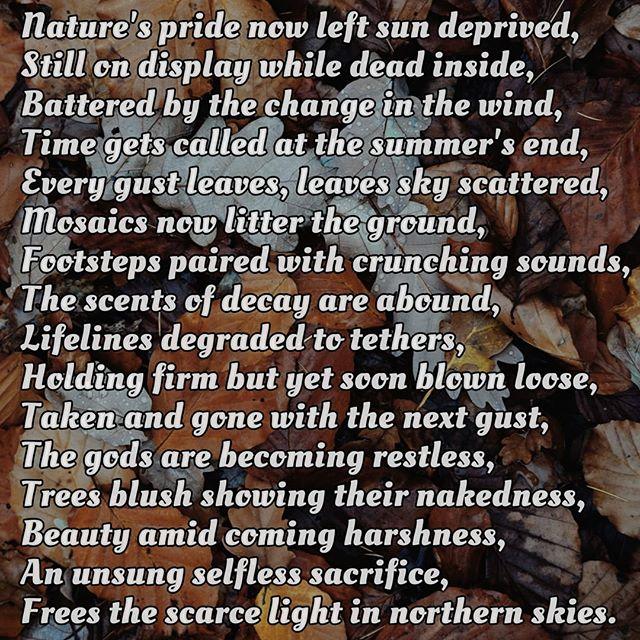 Falling Leaves, Poem On Nature