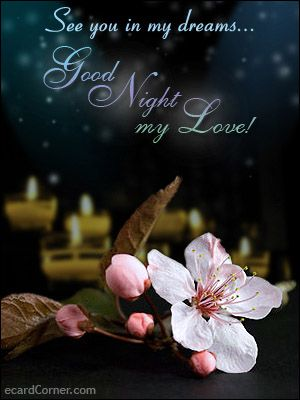 Goodnight my angel quotes