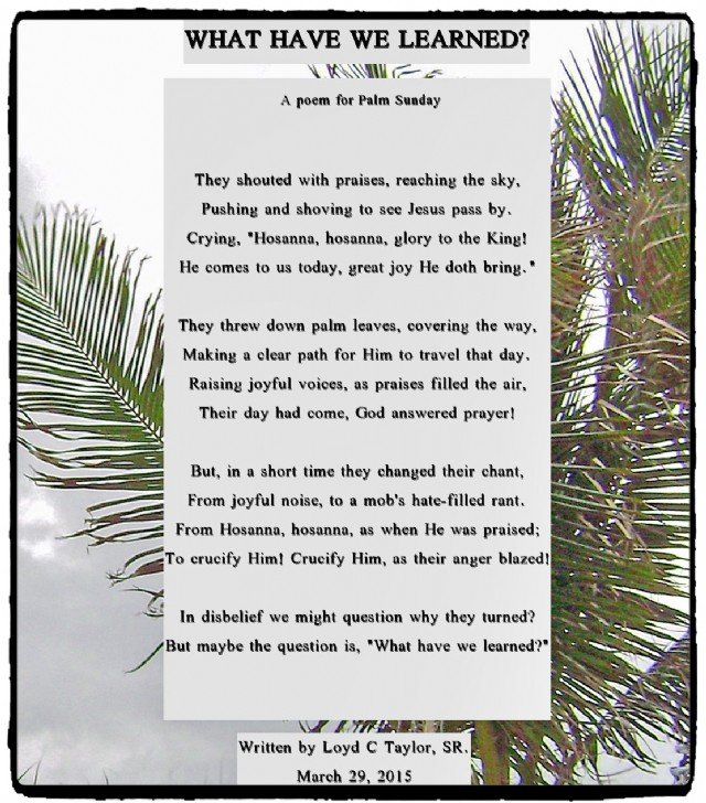 What Have We Learned Poem For Palm Sunday Poem by Loyd C