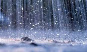 Natural Greed-Rain