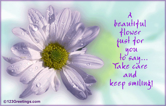Pretty as a flower quotes gallery flower decoration ideas pretty as a flower quotes gallery flower decoration ideas pretty flower quotes image collections flower decoration mightylinksfo