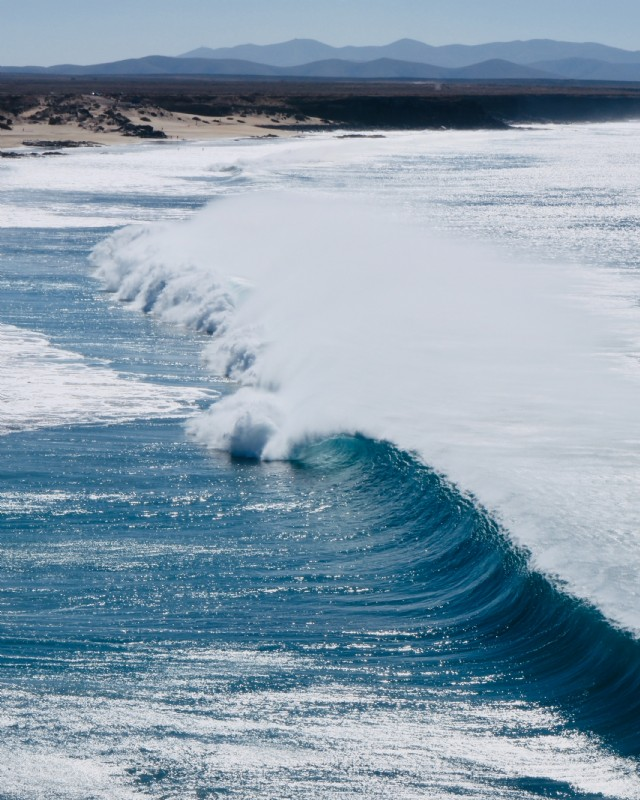 Tsunami Haiku.