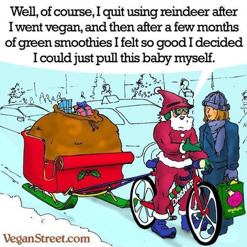 Christmas Weight Loss Quotes: Santa's Weight Loss Poem By Saiom Shriver