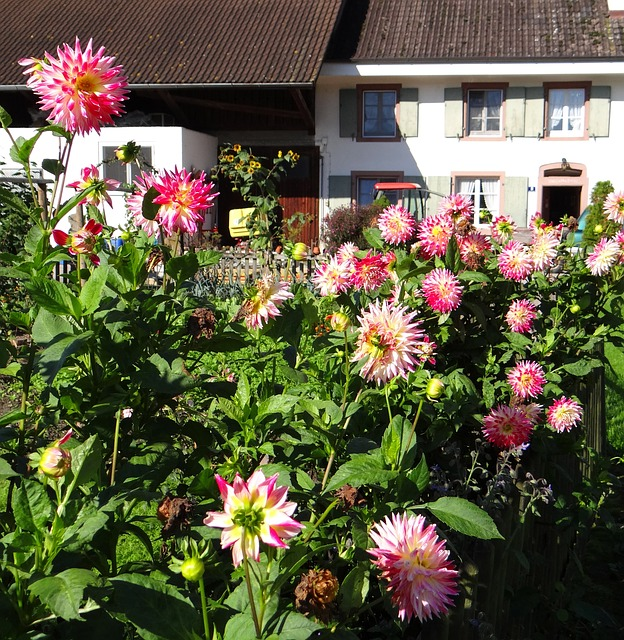 The Cottage In The Blooms-Villanelle