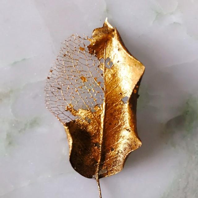 The Treasure Golden