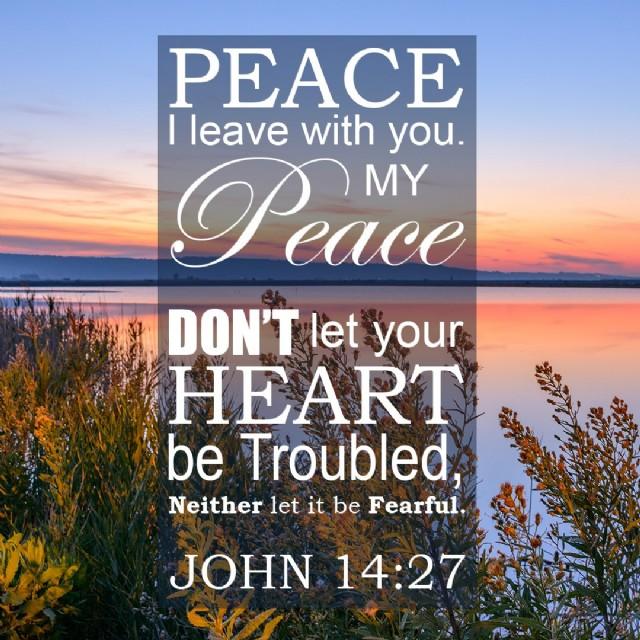 Jesus Comforts....