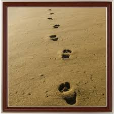 Footprints In The Sand Summary