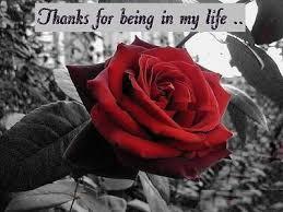 Thank You My Love Poem By Paul Sebastian Poem Hunter