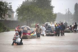 Rain And Destruction
