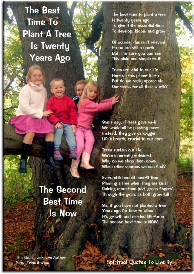 The Best Time To Plant A Tree Poem by Trina Graves - Poem ...