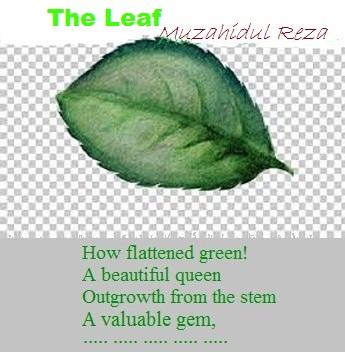 The Leaf (Ekphrastic Poetry)